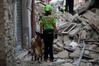 [포토]이탈리아 지진, `마지막까지 구조를`